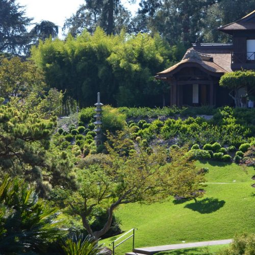 The Beautiful Nature at Huntington Library and Gardens