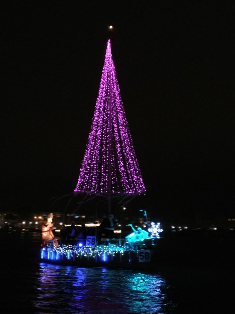 marina del rey christmas tree lights pink