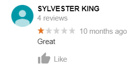 sylvester king dumb review venice canals google