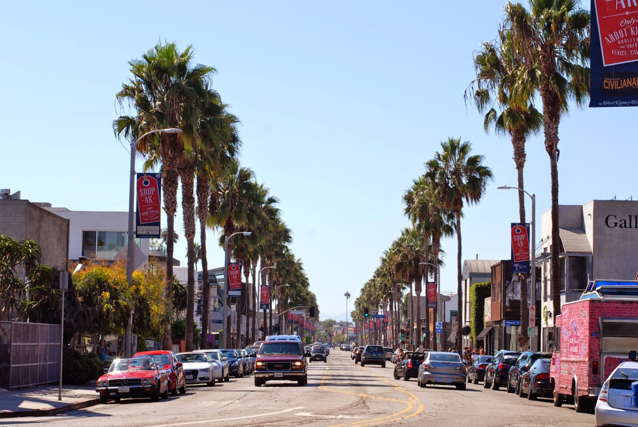 We're Spending Most Our Lives Living in A Hipster Paradise: Abbot Kinney Boulevard near Santa Monica