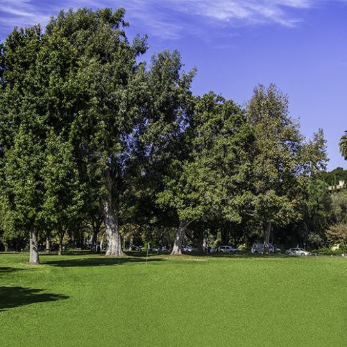 Holmby Park and Armand Hammer Golf Course (Pony / Par 3)