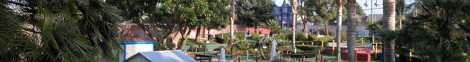 Mini Golf, Batting Cages, and Laser Tag, Oh My!: Mulligan Family Fun Center