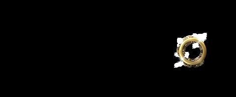 bachelor usa logo