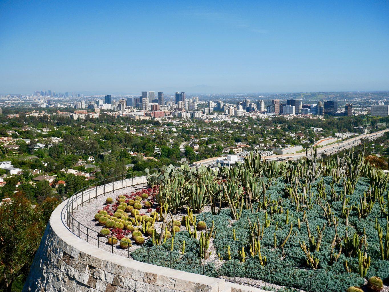 cactus garden getty center