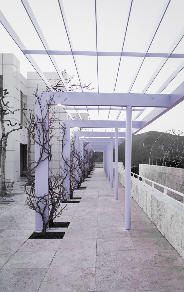 getty center beautiful branches whit earchitecture