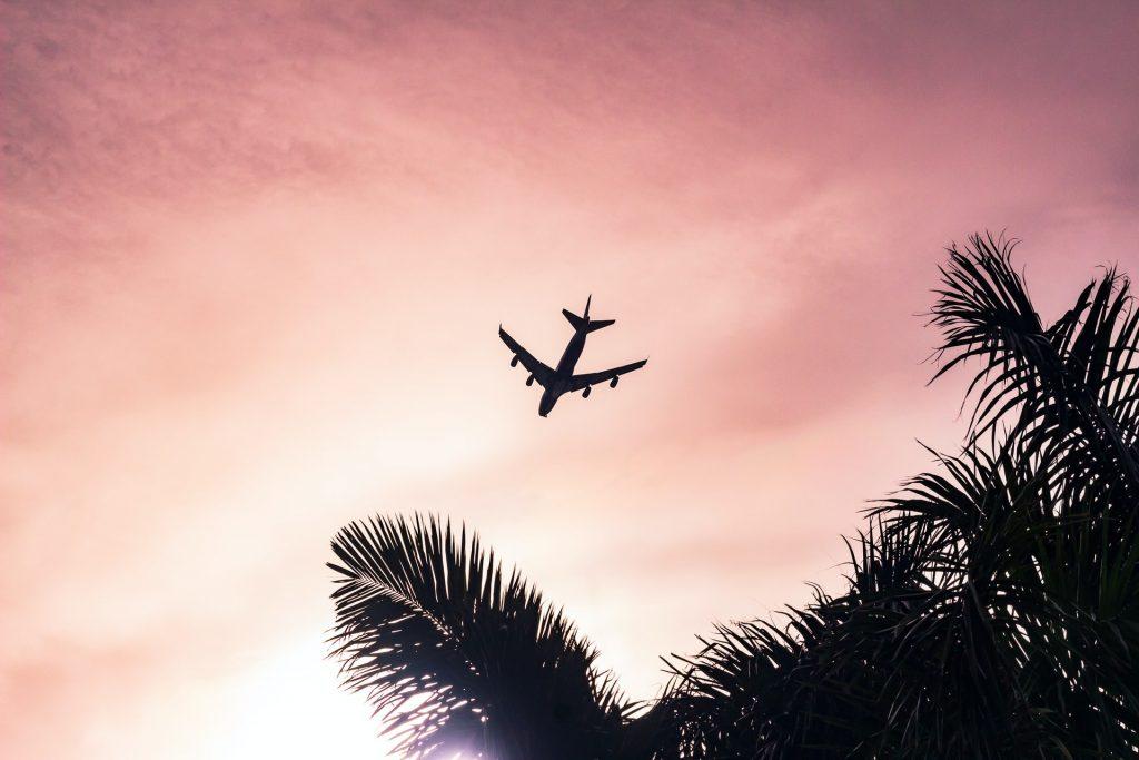 airplane jim clutter park torrance lax bird watching