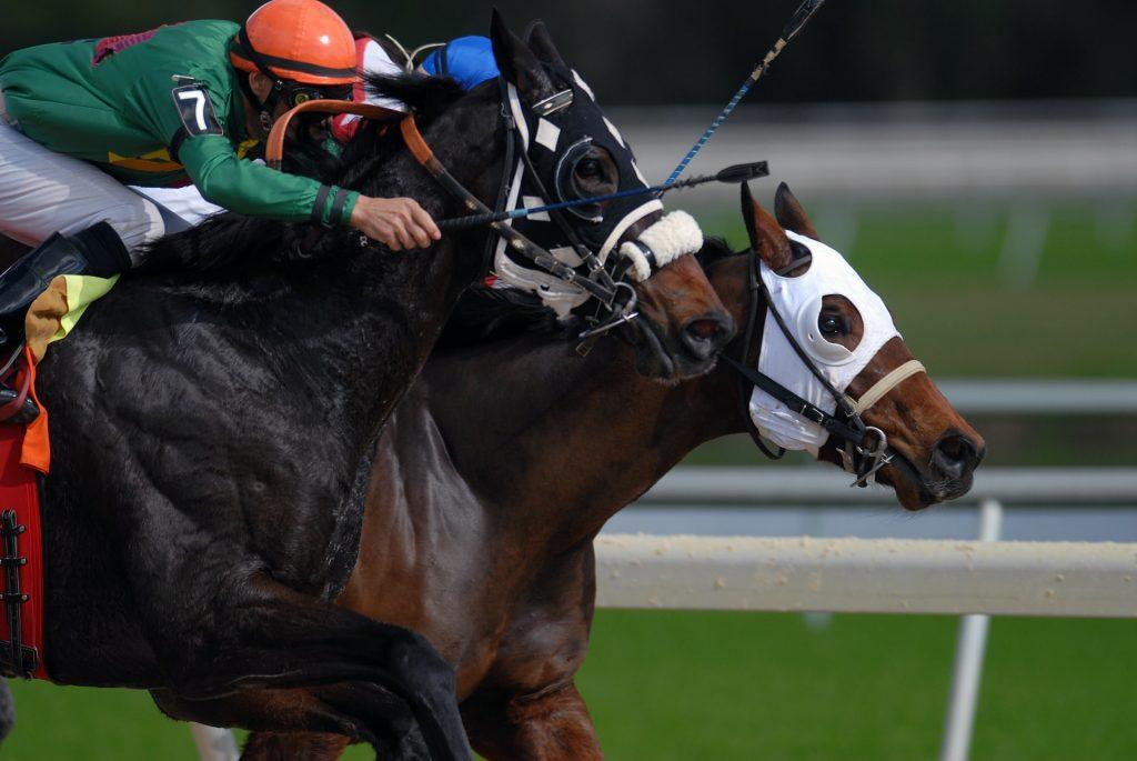santa anita park horse racing horseracing horses jockeys