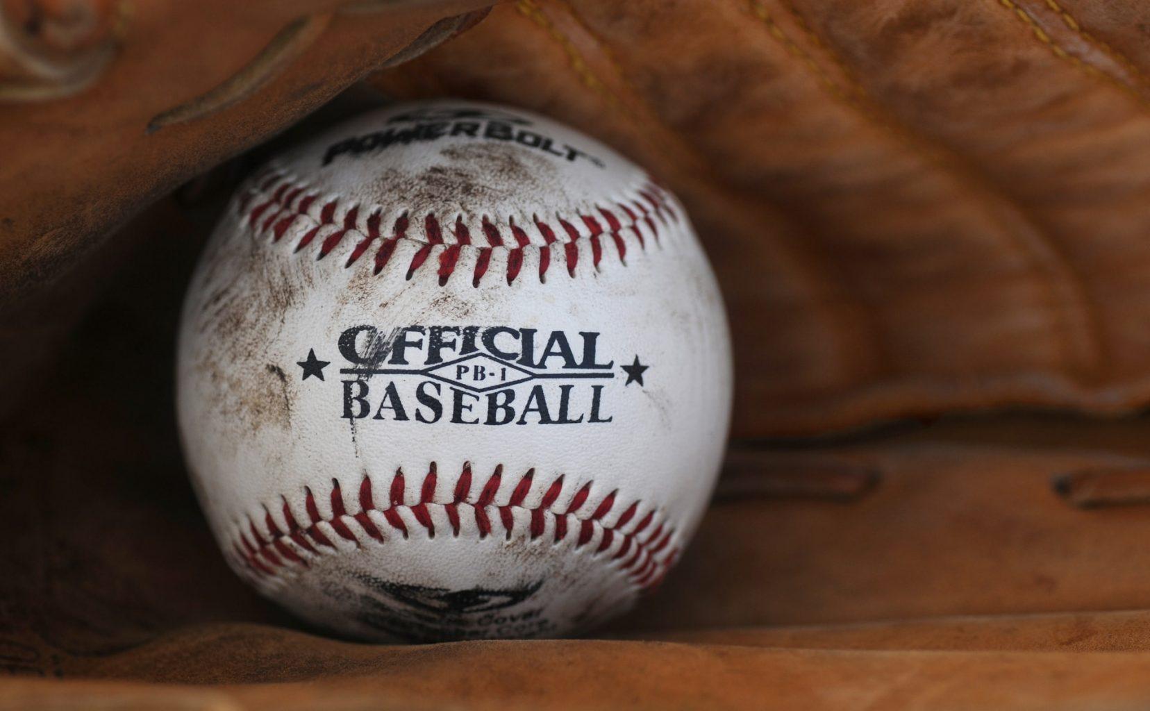 rex's baseball in mitt glove